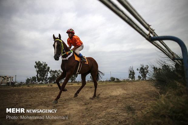 مسابقات اسب دوانی منطقه جنوب کشور در یاسوج برگزار گردید