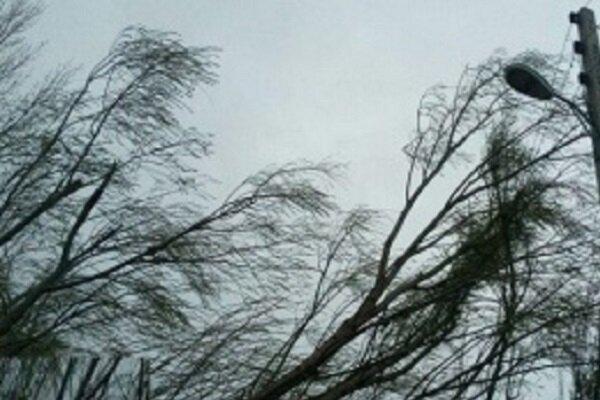 توفان به 153 واحد مسکونی در آمل آسیب زد، خسارت 79 میلیاردی تندباد