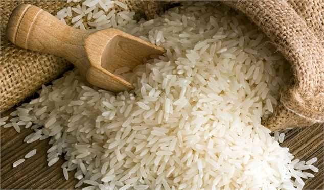 قیمت برنج تایلندی کاهش یافت