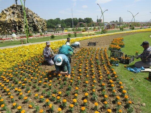 بیش از 5 هزار متر مربع گلکاری در منطقه13