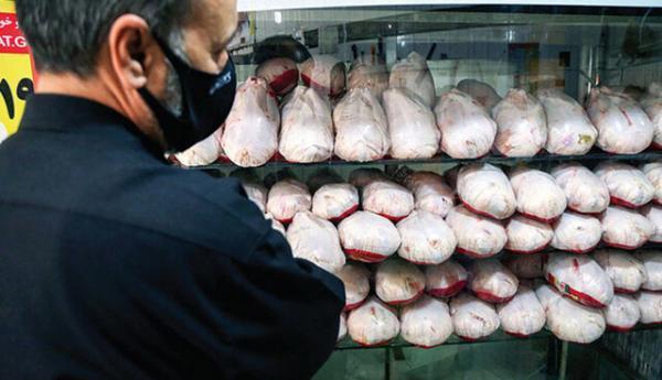فروش عمده مرغ گرم در واحدهای صنفی خراسان جنوبی ممنوع است